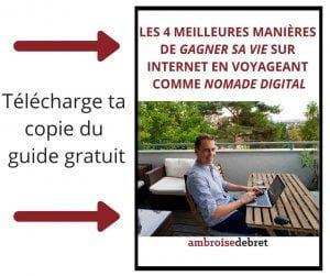 Guide meilleures manières gagner sa vie en ligne nomade digital